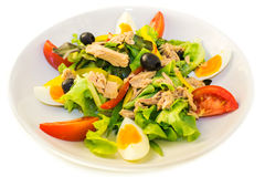 Tuna salad on the plate Royalty Free Stock Images
