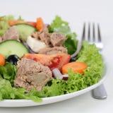 Tuna salad on a plate Royalty Free Stock Image