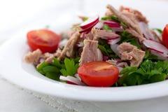 Tuna salad with radish Stock Photography