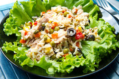 Tuna salad with rice and vegetables Royalty Free Stock Photos