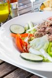Tuna salad. Royalty Free Stock Photography