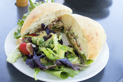 Tuna Salad Sandwich with Ciabatta Bread and Salad Closeup Royalty Free Stock Images