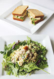 Tuna salad and sandwich. Shot of a tuna salad and sandwich lunch Stock Image
