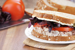 Tuna Salad Sandwich on Whole Grain Bread Royalty Free Stock Photo