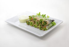 Tuna salad spring rolls. Portion of tuna salad spring rolls with Vasabi sauce, vegetables and in noodle tube on white background Stock Images