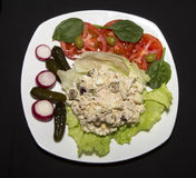 Tuna Salad su lattuga fotografie stock libere da diritti
