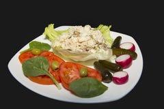 Tuna Salad su lattuga fotografia stock libera da diritti