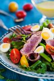 Tuna salad with tomatoes, boiled eggs, onion, anchovy and lettuc. Tuna salad  Nicoise with tomatoes, boiled eggs, onion, anchovy and lettuce Stock Image