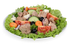 Tuna salad with tomatoes, carrots and olives in bowl Stock Images