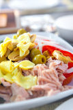 Tuna salad with tomatoes, mushrooms and onions Royalty Free Stock Images