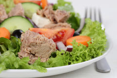 Tuna salad with tomatoes and olives in bowl. Tuna salad with tomatoes, carrots and olives in bowl Royalty Free Stock Photos