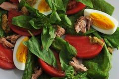 Tuna salad - tuna, spinach, egg, tomatoes, mustard close up Royalty Free Stock Image