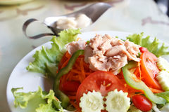 Tuna salad Tuna with vegetable salad. Tuna with vegetable salad and Mayonnaise royalty free stock photo