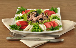 Tuna Salad and vegetables Royalty Free Stock Photo
