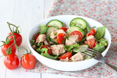 Tuna salad with vegetables Stock Photography