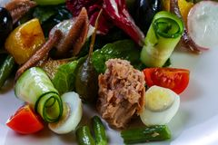Tuna salad with vegetables Stock Images
