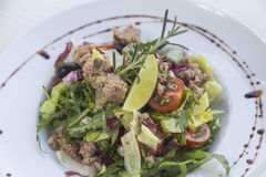 Tuna salad. With vegetables on the plate Stock Images