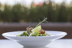 Tuna salad. With vegetables on the plate Royalty Free Stock Photos