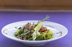 Tuna salad. With vegetables on the plate Stock Image