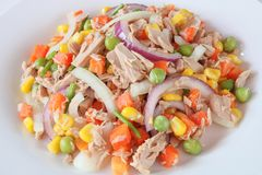 Tuna salad with vegetables. Close up.Homemade meal for good health and weight loss stock photos