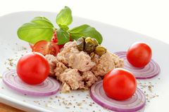 Tuna salad whit onion end tomato Royalty Free Stock Photos