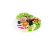 Tuna Salad. Stock Images