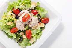 Tuna salad in white plate Royalty Free Stock Images