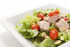 Tuna salad in white plate Royalty Free Stock Image