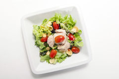 Tuna salad in white plate Stock Photography