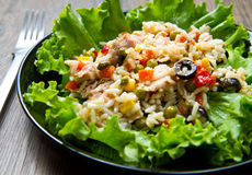 Tuna Salad With Rice And Vegetables Royalty Free Stock Photography