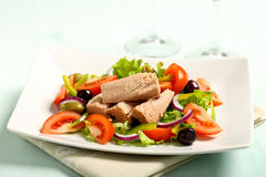 Free Tuna Salad With Tomatoes Royalty Free Stock Images - 29991839