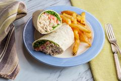 Tuna Salad Wrap Sandwich Royalty Free Stock Photo