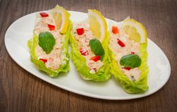 Tuna Salad Wraps foto de stock