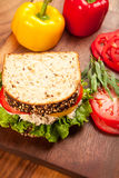 Tuna Sald Sandwich Royalty Free Stock Images