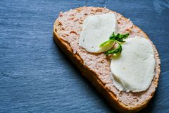 Tuna Sandwich royalty-vrije stock afbeeldingen
