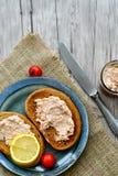 Tuna Sandwich photographie stock libre de droits