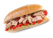 Tuna sandwich royalty free stock image