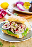 Tuna sandwich Royalty Free Stock Photo