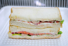 Tuna Sandwich Royaltyfri Fotografi