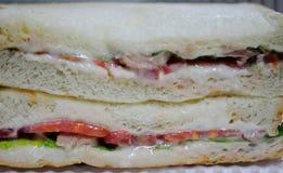 Tuna Sandwich Arkivfoto