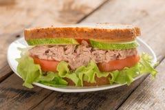 Tuna Sandwich Fotografia de Stock Royalty Free