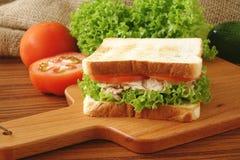 Tuna Sandwich Lizenzfreie Stockbilder