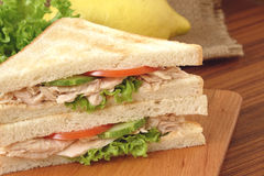 Tuna Sandwich Royaltyfria Foton