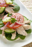 Tuna Sandwich Royalty Free Stock Photography