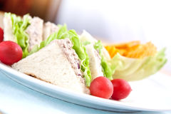 Tuna sandwich with cherry tomatoes Royalty Free Stock Image