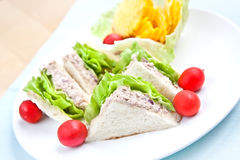 Tuna sandwich with cherry tomatoes Stock Images