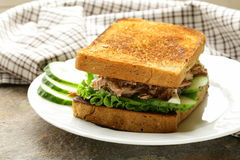 Tuna sandwich with cucumber Stock Images