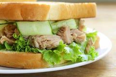 Tuna sandwich with fresh cucumber Royalty Free Stock Photo