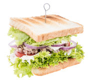 Tuna Sandwich isolated on white Royalty Free Stock Image