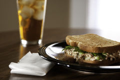 Tuna sandwich lunch Royalty Free Stock Photos